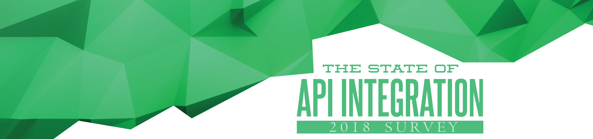 State of API Integration Survey