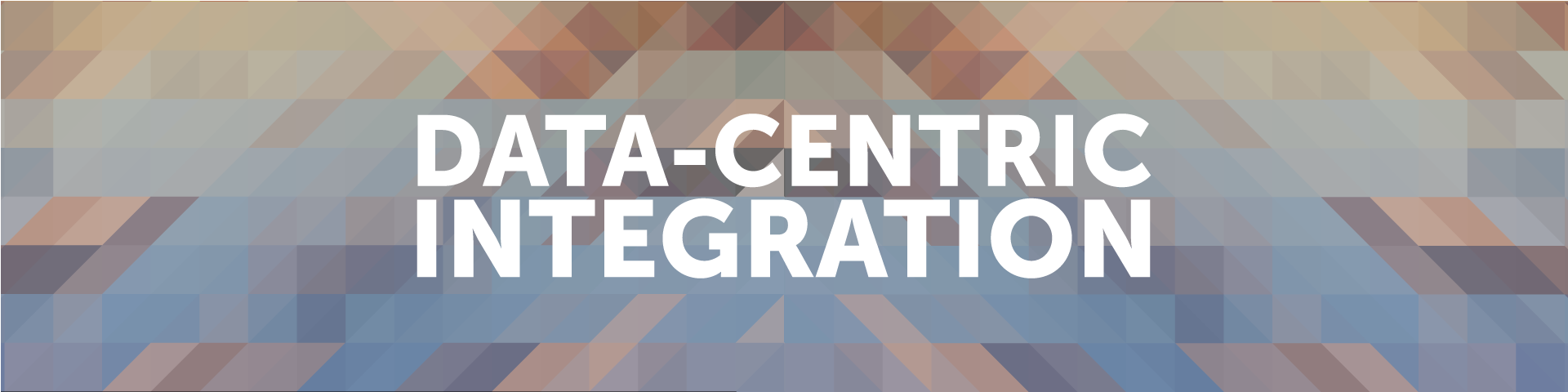 data-centric-integration-blog-banner1.png