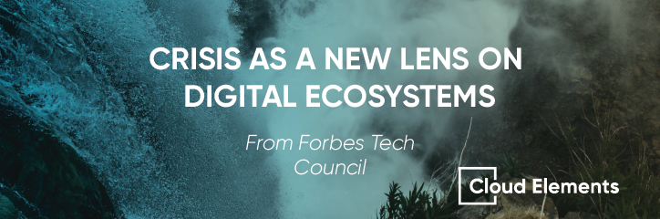 digital ecosystems in times of crisis