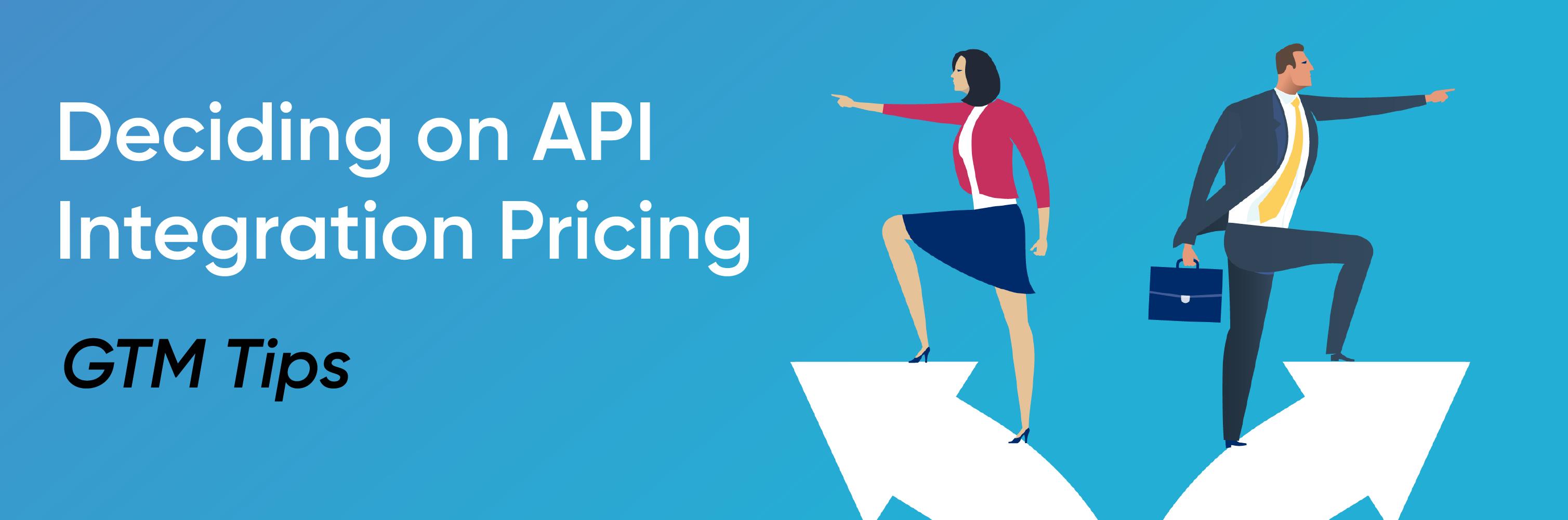 API integration pricing