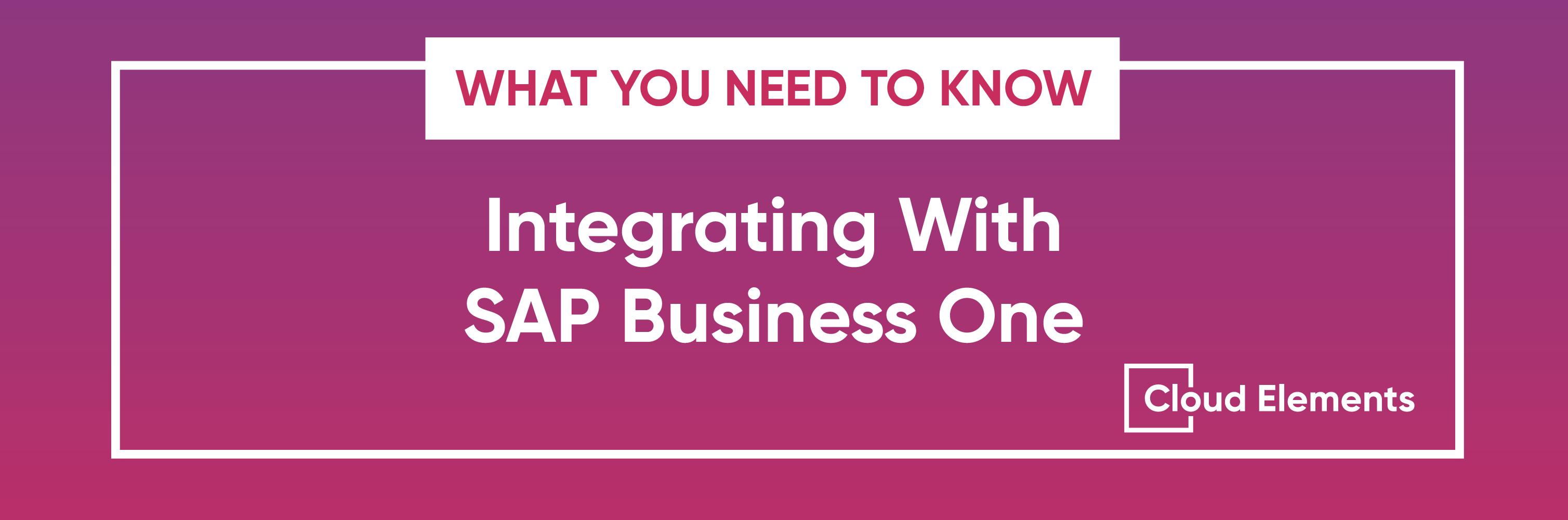 SAP Business One API