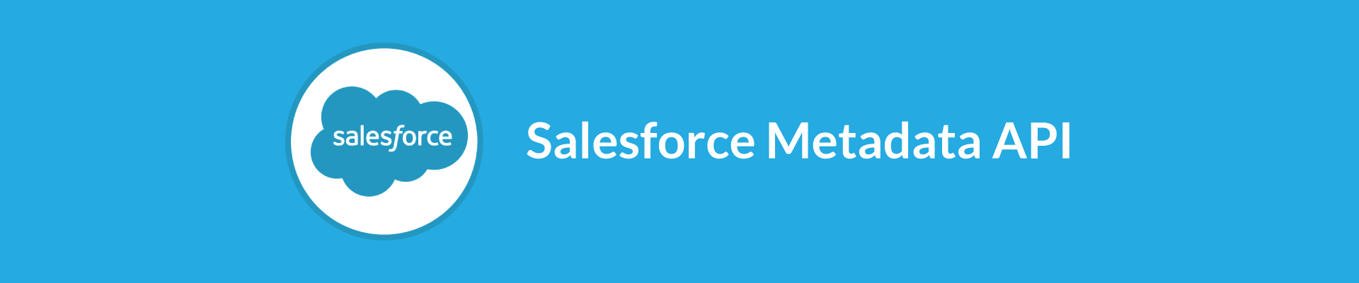 Salesforce Metadata API